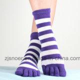 Hot Sale Looping Five-Toes Socks Knitting Machine