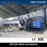 Focusun Fish Cooling 10ton Block Ice Maker