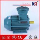 Single Phase AC Induction Electric 380V Motor
