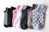 Woman Ankle Cotton Socks (DL-WS-74)