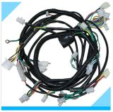 Custom Auto Electric Wire Harness Assembly Manufacturer