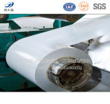 High Quality Prepainted Steel Coil Sheet