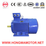 3HMI-Ie3 Series Cast-Iron Housing Premium Efficiency Motor Pole with 132kw