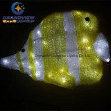 Kids Love Acrylic LED Bottom Fish