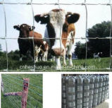Supply Wholesale High Quality Grassland Fence with Best Price (10 years factory)