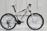 Alloy MTB Bike, Mountain Bicycle
