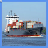Lowest Price Sea Freight 20gp /40gp/Hq From China Shenzhen to Sao Paulo, Brazil (IC0046)