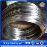 Professional Stainless Steel Wire Mesh with Factory Price