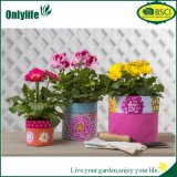 Onlylife Colorful Fabric Pots/ Grow Bags for Home Garden