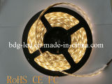 5050 SMD Waterproof 60 LEDs Per Meter LED Strip Lighting