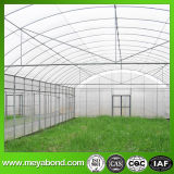 Fruit Tree HDPE Insect Proof Net / Greenhouse Plastic Anti Insect Net