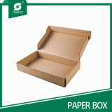 Kraft Paper Packaging/Shipping/Mailing Box