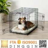 Bichon Frise Iron Folding Cage