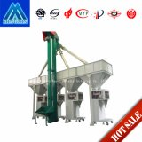 Th Ring Chain Bucket Elevator for Vertical Conveying/Conveyor