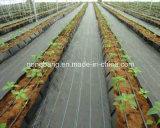 Anti Weed Mat Made in China