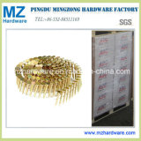 Electro Galvanized Collated Coil Roofing Nail