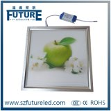 Square / Round High Quality Isolated Power LED Panel (8W, 24W, 36W)