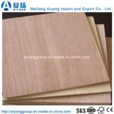 Wall Panel Building Material Cheap Commercial Plywood for Furniture