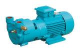 0.55kw to 5.5kw Water Loop Vacuum Pump (SK-A)