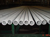Cold Drawn Stainless Steel Seamless Pipe / Tube (TP310S)