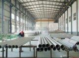 Steel Strucute Workshop/Plant with Crane (SS-154)
