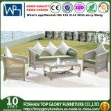 Synthetic Rattan Outdoor Garden Furniture Cornor Sofa Set (TG-1020)