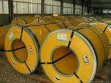 Stainless Steel Coil-06 with All Grades