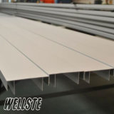 Aluminium Extrusion Profile for Sliding Window and Door