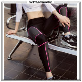 New Arrival Nylon Spandex Womens Tight Yoga Pants