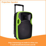 ODM 12 Inches Plastic Active Projection Speaker with Excellent Performance