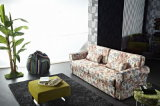 Pull-out Sofa Bed with Elegant Image
