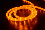 Orange Color LED Rope Light with CE Certified
