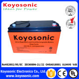 5-Year Warranty 12V 100ah Deep Cycle Battery SMF VRLA Battery