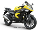 Rzm250f-5b Racing Motorcycle 150cc/200cc/250cc