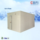 Freezer Room with Good Insulation Panel and High Refrigeration