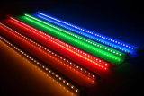 High Quality 12V, 24V 30LEDs/M SMD5050 Rigid LED Strip with IEC/En62471