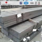 Best Price Hot Rolled Mild Steel Carbon Steel Flat Bar with Holes