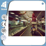 Ce Approved Speed 0.5m/S Moving Walkway