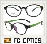 Fashion Optical Frames, High Quality for Korea Market