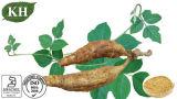 Supply Isoflavones 40%, 80% Kudzu Root Extract