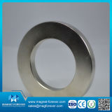 Various Shape Strong Magnetic Neodymium Magnet
