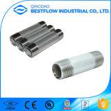 NPT Bsp Carbon Steel Galvanized Pipe Nipple