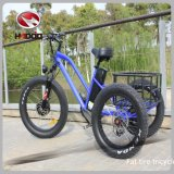 2017 China Wholesale 3 Wheel Electric Tricycle with Fat Tire for Adult