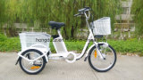 Europe Popular Ce Electric Tricycle for Supermarket