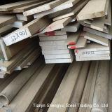 Stainless Steel Flat Bar (317)