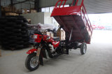 Pick-up of 3 Wheel Motorcycle for Garbage Truck
