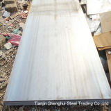 Highly Quality Stainless Steel (SUS321)