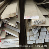Premium Quality Stainless Steel Flat Bar (316)