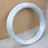 Providing Latest Price of Hot Dipped Galvanized Wire in 1.22 mm