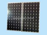 Monocrystalline PV Solar Module (150W-250w)